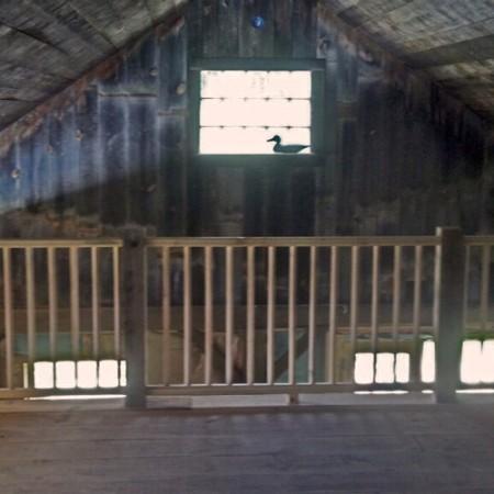 20x30 garage interior loft for Garage with loft for sale