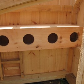 4x6 Chicken Coop - Interior