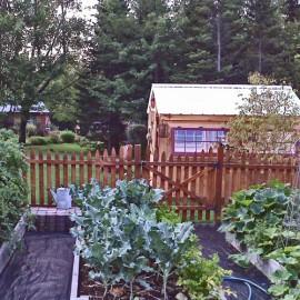 8x10 Greenhouse - Exterior