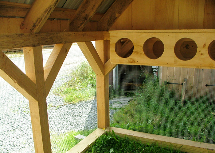 Prefab Chicken Coops For Sale Chicken Shed Plans