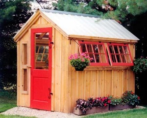6x8 Greenhouse with painted trim and doors.