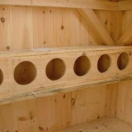 Chicken Coop - Interior