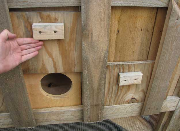 Chicken Nesting Boxes For Sale Wooden Nesting Box