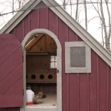 4x10 Hardware Shed - Chicken Coop - Exterior