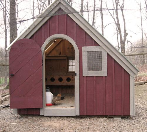 4x10 Chicken Coop